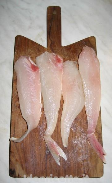 pasta al sugo di gallinella | un po' di tutto - Come Cucinare Filetti Di Gallinella